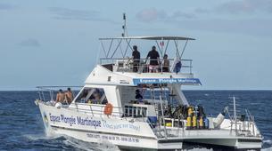Scuba Diving-Les Trois-Îlets-Adventure dives in Martinique-1