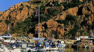Plongée sous-marine-Porto Ota-Baptême de Plongée à Porto, Corse-2