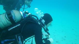 Scuba Diving-Zakynthos (Zante)-Discover Scuba Diving in Zante-1