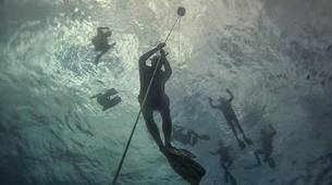 Apnée-La Réunion-Excursions Plongée en Apnée sur les Récifs de l'île de La Réunion-1