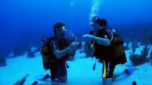 Scuba Diving-Les Trois-Îlets-Adventure dives in Martinique-4