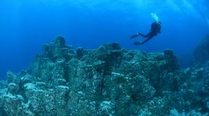 Scuba Diving-Santa Maria-Guided adventure dives around Santa Maria, Azores-2