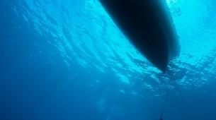 Scuba Diving-Port-Louis, Grande-Terre-FFESSM or SSI Nitrox diving course in Port Louis, Guadeloupe-2