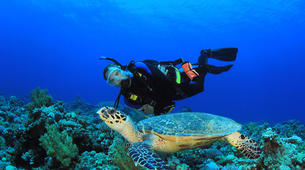 Scuba Diving-Phuket-PADI Open Water diving course in Phuket-2