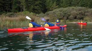 Kayaking-Rotorua-Kayaking on Lake Rotoiti to the hot pools in Rotorua-4