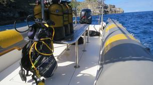 Snorkeling-Port-Louis, Grande-Terre-Snorkeling excursion in Port Louis, Guadeloupe-5