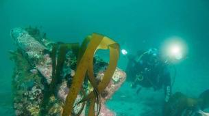 Plongée sous-marine-Le Cap-Open Water scuba diving course in Cape Town-5