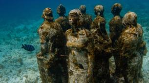 Scuba Diving-Cancun-Reef Diving in Isla Mujeres National Marine Park-6