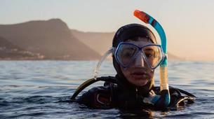 Plongée sous-marine-Le Cap-Open Water scuba diving course in Cape Town-1