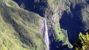 Hiking / Trekking-Cirque de Salazie, Hell-Bourg-Hiking in the Belouve forest, Reunion Island-6