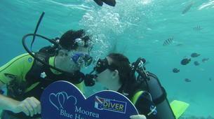 Scuba Diving-Moorea-First scuba dive in Mo'orea-1