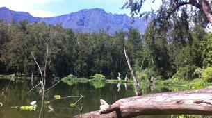 Randonnée / Trekking-La Réunion-Trek de 10J/9N de Traversée de La Réunion-12