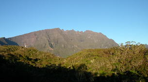 Hiking / Trekking-Cirque de Salazie, Hell-Bourg-Hiking in the Belouve forest, Reunion Island-2