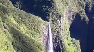Hiking / Trekking-Cirque de Salazie, Hell-Bourg-Hiking in the Belouve forest, Reunion Island-5