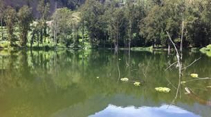 Randonnée / Trekking-La Réunion-Trek de 10J/9N de Traversée de La Réunion-5