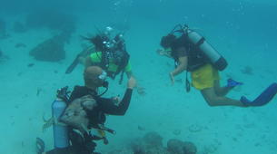 Scuba Diving-Moorea-First scuba dive in Mo'orea-2