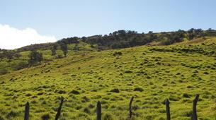 Hiking / Trekking-Piton de la Fournaise-Hiking up the Piton de la Fournaise in La Reunion-9