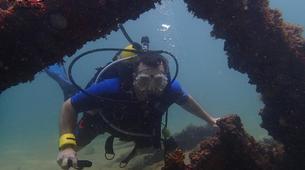 Scuba Diving-Salvador-Guided adventure dives in Porto da Barra-2
