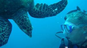 Scuba Diving-Moorea-First scuba dive in Mo'orea-6