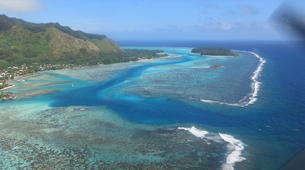 Snorkeling-Moorea-Private Lagoon discovery expedition in Moorea-6