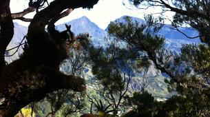 Randonnée / Trekking-La Réunion-Trek de 10J/9N de Traversée de La Réunion-8