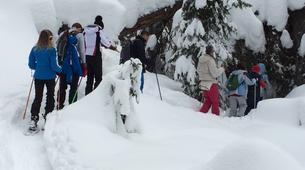 Snowshoeing-Madonna di Campiglio-Snowshoeing excursions in Madonna di Campiglio-11