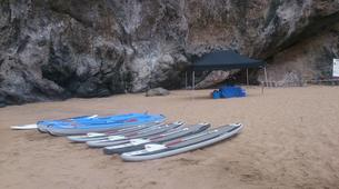 Stand up Paddle-Costa Adeje, Tenerife-Stand up paddle excursion with dolphins and turtles in Los Cristianos-5