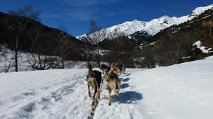 Dog sledding-Andorra-Mushing excursion in Grau Roig-6