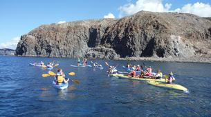 Sea Kayaking-Costa Adeje, Tenerife-Kayaking excursion with dolphins and turtles in Los Cristianos-6
