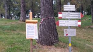 "Mountain bike-Lake Como-Mountain biking excursion ""Mount Legnoncino"" around Lake Como-4"