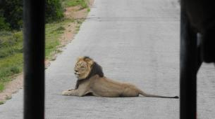 Safari-Cape Town-5D/4N Garden Route and Addo tour from Cape Town-5