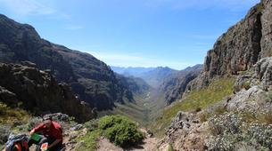 Hiking / Trekking-Cape Town-Hiking excursions on Table Mountain-9