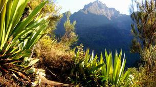 Hiking / Trekking-Cirque de Cilaos-Hiking along Bras Rouge and Cilaos in Reunion island-4