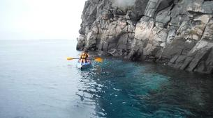 Sea Kayaking-Costa Adeje, Tenerife-Kayaking excursion with dolphins and turtles in Los Cristianos-5