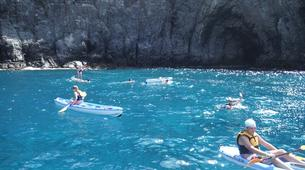 Sea Kayaking-Costa Adeje, Tenerife-Kayaking excursion with dolphins and turtles in Los Cristianos-3