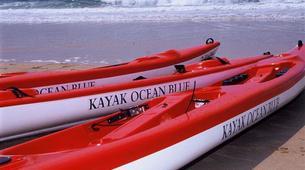 Sea Kayaking-Plettenberg Bay-Sea kayaking excursion in Plettenberg Bay-3
