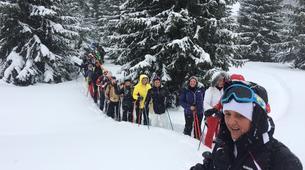 Snowshoeing-Madonna di Campiglio-Snowshoeing excursions in Madonna di Campiglio-10