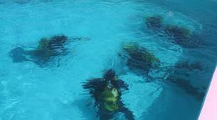 Scuba Diving-Pico-PADI Bubblemaker course for children on Pico Island-3