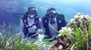 Scuba Diving-Mallorca-PADI Scuba Diver course in Mallorca-3