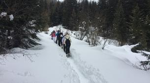 Snowshoeing-Madonna di Campiglio-Snowshoeing excursions in Madonna di Campiglio-8
