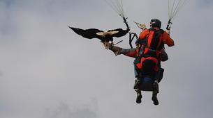 Paragliding-Morzine, Portes du Soleil-Paragliding initiation course in Morzine Avoriaz-6