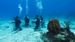 Scuba Diving-Ko Racha Yai-Discover scuba diving in Ko Racha Yai-5