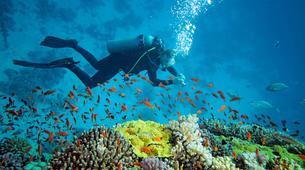 Scuba Diving-Ko Racha Yai-Discover scuba diving in Ko Racha Yai-1