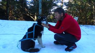 Dog sledding-Ariege-Mushing and snowshoeing excursion in Ariege near Foix-2