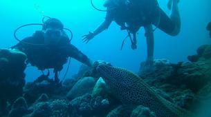 Scuba Diving-Saint-Leu-First scuba dive in Reunion Island-6