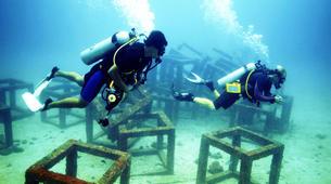 Scuba Diving-Ko Racha Yai-Discover scuba diving in Ko Racha Yai-2