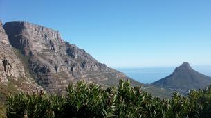 Hiking / Trekking-Cape Town-Hiking excursion up Devil's Peak in Cape Town-4