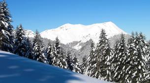Snowshoeing-Saint-Lary-Soulan-Snowshoeing excursion in the Vallée d'Aure-3