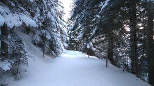 Snowshoeing-Saint Lary-Family friendly snowshoeing excursion in the Vallée d'Aure-5