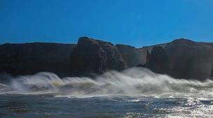 Experiences Wildlife-Mbotyi-Sardine Run in Mbotyi, South Africa-6